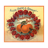 Carnation Brand - California - Citrus Crate Label Posters by  Lantern Press