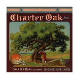 Charter Oak Brand - Charter Oak, California - Citrus Crate Label Prints by  Lantern Press