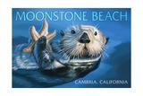 Cambria, California - Sea Otter with Starfish Prints by  Lantern Press