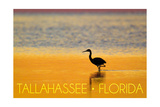 Tallahassee, Florida - Golden Heron Prints by  Lantern Press