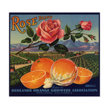 Rose Brand - Redlands, California - Citrus Crate Label Poster by  Lantern Press