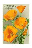 Monterey, California - State Flower - Poppy Flowers Posters by  Lantern Press