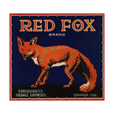 Red Fox Brand - Orange, California - Citrus Crate Label Plakater af  Lantern Press