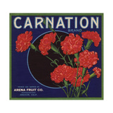 Carnation Brand - Anaheim, California - Citrus Crate Label Premium Giclee Print by  Lantern Press