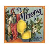 Minerva Brand - Corona, California - Citrus Crate Label Art by  Lantern Press