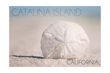 Catalina Island, California - Sand Dollar on Beach Prints by  Lantern Press
