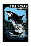 Bellingham, Washington - Orca and Calf Scratchboard Prints by  Lantern Press