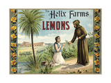 The Helix Farms Brand - California - Citrus Crate Label Poster by  Lantern Press