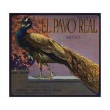 El Pavo Real Brand - Anaheim, California - Citrus Crate Label Prints by  Lantern Press