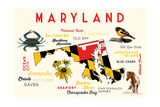 Maryland - Typography and Icons with Black Eyed Susans Posters by  Lantern Press