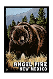 Angel Fire, New Mexico - Grizzly Bear - Scratchboard Prints by  Lantern Press