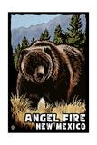 Angel Fire, New Mexico - Grizzly Bear - Scratchboard Prints by  Lantern Press
