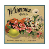 Wildflower Brand - Ruddock, California - Citrus Crate Label Posters by  Lantern Press