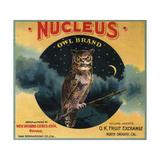 Nucleus Owl Brand - Ontario, California - Citrus Crate Label Prints by  Lantern Press