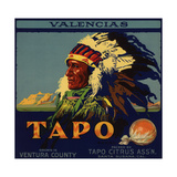 Tapo Brand - Santa Susana, California - Citrus Crate Label Premium Giclee Print by  Lantern Press