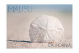 Malibu, California - Sand Dollar and Beach Posters by  Lantern Press