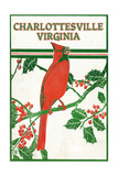 Charlottesville, Virginia - Cardinal Perched on a Holly Branch Posters by  Lantern Press