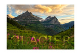 Glacier National Park, Montana - Sunset and Flowers (Horizonal Version) Print by  Lantern Press