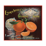 Diamond Brand - Denver, Colorado - Citrus Crate Label Premium Giclee Print by  Lantern Press