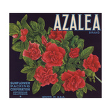 Azalea Brand - Porterville, California - Citrus Crate Label Premium Giclee Print by  Lantern Press