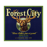 Forest City Brand - Lemon Cove, California - Citrus Crate Label Prints by  Lantern Press