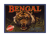 Bengal Brand - La Habra, California - Citrus Crate Label Prints by  Lantern Press