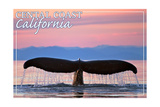 Central Coast California - Humpback Fluke and Sunset Print by  Lantern Press