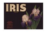Iris Brand - Duarte, California - Citrus Crate Label Prints by  Lantern Press