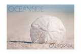 Oceanside, California - Sand Dollar on Beach Print by  Lantern Press