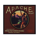 Apache Brand - Pomona, California - Citrus Crate Label Prints by  Lantern Press