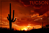 Tucson, Arizona - Sunset and Cactus Posters by  Lantern Press