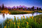 Grand Teton National Park, Wyoming - Flower Foreground Posters af Lantern Press