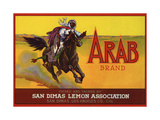 Arab Brand - San Dimas, California - Citrus Crate Label Print by  Lantern Press