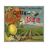 Queen Bee Brand - Corona, California - Citrus Crate Label Posters by  Lantern Press