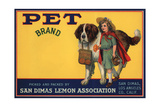 Pet Brand - San Dimas, California - Citrus Crate Label Prints by  Lantern Press