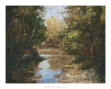 Winding River Giclee Print by Mary Jean Weber