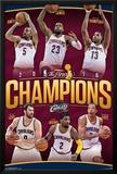 2016 NBA Finals- Champions Rollcall Print