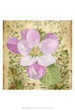 Vintage Apple Blossom II Prints by Leslie Mark