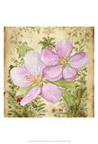 Vintage Apple Blossom I Posters par Leslie Mark