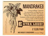 Mandrakes, Extra Loud Prints by  Anonymous