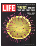 LIFE Viruses-The Flu Germ 1966 Posters by  Anonymous