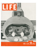 LIFE Bomber Taks Force 1942 Prints by  Anonymous