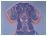 Andy Warhol - Portrait of Maurice, 1976 Plakát