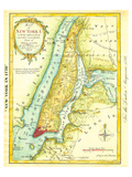 Map of New York City 1869 Poster by  Kitchen - Shannon