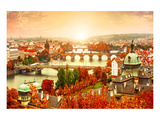 Vltava River in Prague Czechia Prints by  Anonymous