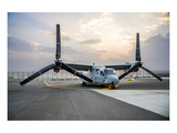 V-22 Osprey joint service aircraft Prints by  Anonymous