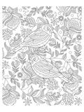 Two Partridges In A Tree Design Coloring Art Posters by  Anonymous