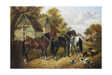 Farmyard Scene Giclee Print by John Frederick Herring Jnr