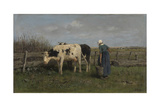 Milking Time Giclee Print by Anton Mauve
