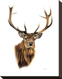 Stag White Background Stampa su tela di Sarah Stribbling